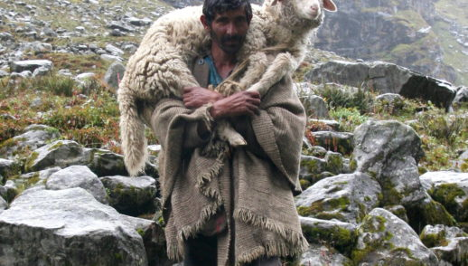 """IV Domenica. """"La mia vita per le pecore"""""""