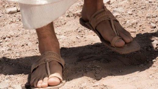 XV Domenica. Solo sandali e bastone