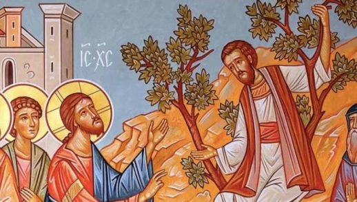 XXXI Domenica del Tempo Ordinario. Cercava di vedere chi era Gesù